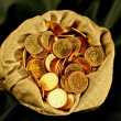 Coins sack — Stock Photo