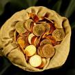 Coins sack — Stock Photo