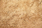Merino rug — Stock Photo