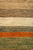 Straps rug — Stock Photo