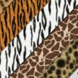 Royalty-Free Stock Photo: Safari skins