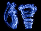 Two smokes — Stock Photo