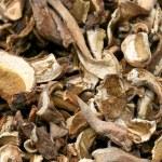 Dry mushroom — Stock Photo