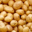Stock Photo: Organic potatoes