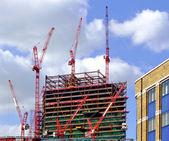 Construction cranes — Stock Photo