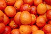 Bloody oranges 3 — Stock Photo