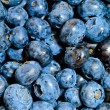 Royalty-Free Stock Photo: Blueberry
