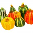 Pumpkin gourds isolated — Stock fotografie