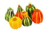 Pumpkin gourds isolated — Stock Photo
