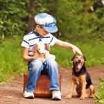 Boy and dog — Stock Photo