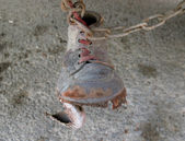 чистка обуви на цепи — Стоковое фото