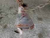 Sapato na cadeia — Foto Stock