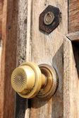 The bronze door handle — Stock Photo