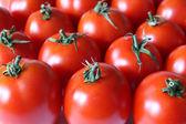 Tomatoes — Foto Stock