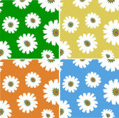 Floral backgrounds — Stock Photo