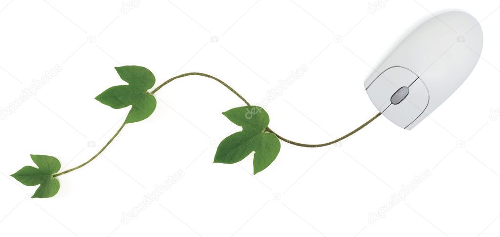 A three-button computer mouse with a green vine as its cord symbolizing concepts from convergence of digital and green technologies to using an online gardening — Stock Photo #3515362