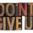 Do not give up phrase in wooden type - Stock Photo
