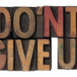 Stock Photo: Do not give up phrase in wooden type