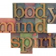 Body, mind and spirit concept — Foto Stock