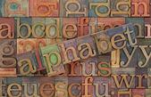 Alphabet in vintage wood type — Stock Photo