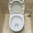 Flush toilet — Stock Photo #3126790