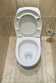 Flush toilet — Stock Photo