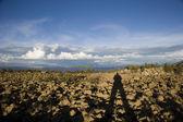 Titicaca — Zdjęcie stockowe