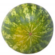 Watermelon — Foto Stock