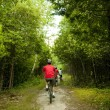 Stock Photo: Biking in woods