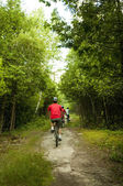 Biking in the woods — Stock Photo