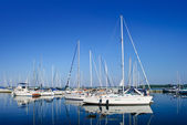 Luxury white yachts and boats moored in a port — Stock Photo