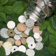 Global coins on green leaves — Stock Photo