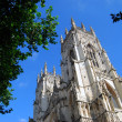 Stock Photo: York Minster view