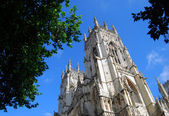 York Minster view — Stock Photo