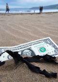 Notion de dollar — Photo