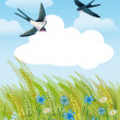 Summer field with swallows — Stockfoto
