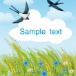 Summer field with swallows - Stock Vector