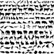 Hundreds different animals — Stock Vector