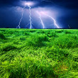 Foto Stock: Storm over wheat field