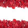 Falling rose petals - Stock Photo