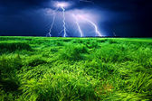 Storm over wheat field — 图库照片
