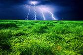 Tormenta sobre campo de trigo — Foto de Stock