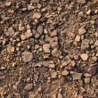 Landscape with cracked land — Stock Photo #3053798