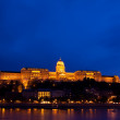 Night lights in Budapest — Foto Stock