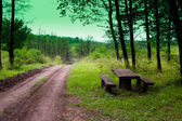 Resting place in the wood — Stock Photo
