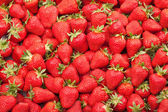 Fresh strawberry — Stock fotografie