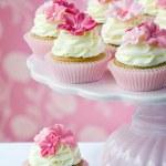Cupcakes — Stock Photo #2712752