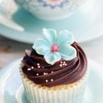 Cupcake — Stock Photo #3172105