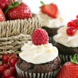 Red berry cupcakes — Stock Photo