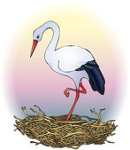 Stork in the nest — Stock Vector